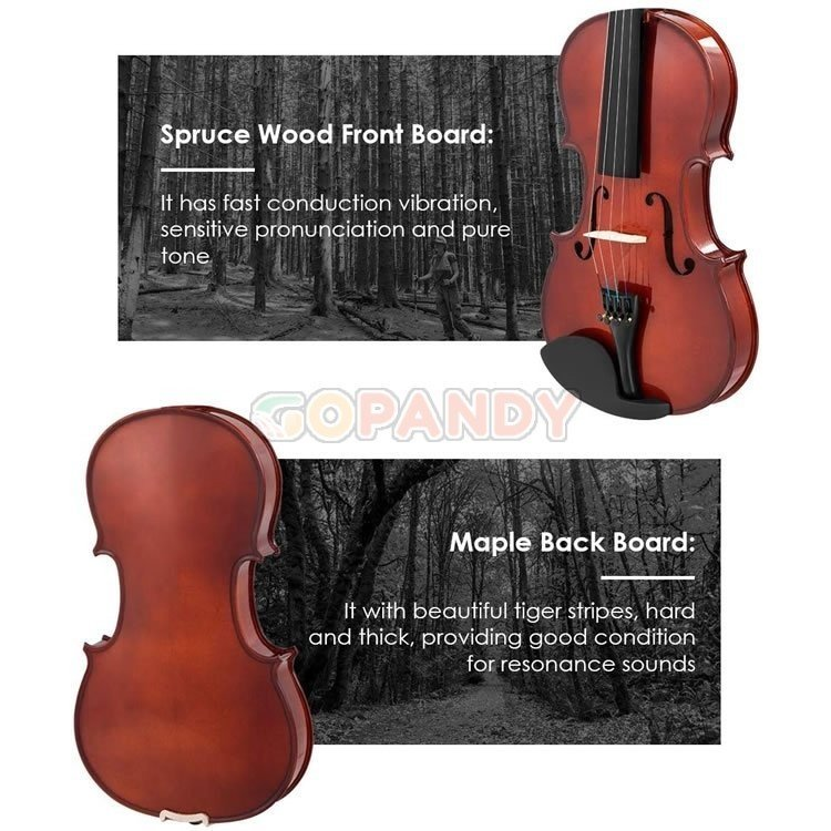 violin-4-4-04