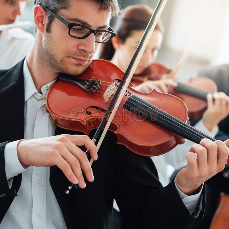 violin-4-4-05