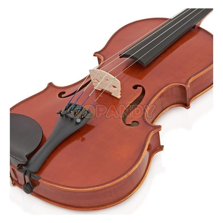violin02.jpg