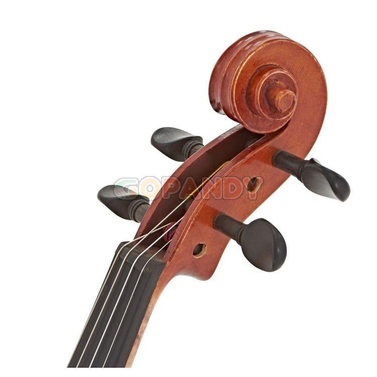 violin04.jpg